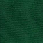 Verde Bottiglia - Sciarpa Costina